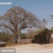 Zdj. nr 1;Zdjęcie wykonane w Kenii.