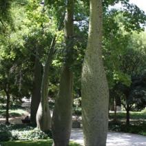 Zdj. nr 3;Zdjęcie wykonane w Hiszpanii