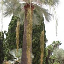 Zdjęcie wykonane w Hiszpanii