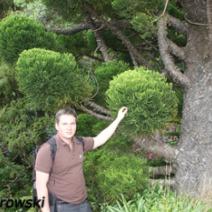 Zdj. nr 2;Zdjęcie wykonane w Nowej Zelandii.