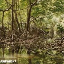 Zdj. nr 2;Zdjęcie wykonane na Dominikanie.