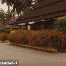 Zdj. nr 1;Zdjęcie wykonane w Tajlandii.