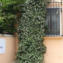 Zdj. nr 1;Zdjęcie wykonane w Hiszpanii