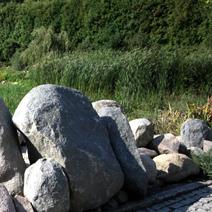 Zdj. nr 3Głazy - kamienie.