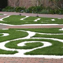 Zdj. nr 15Kompozycja trawnikowa i białego grysu
