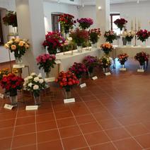 Zdj. nr 47;Święto Róż w Końskowoli w nowym ratuszu w 2020 roku