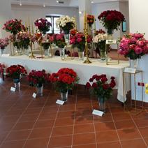 Zdj. nr 51;Święto Róż w Końskowoli w nowym ratuszu w 2020 roku