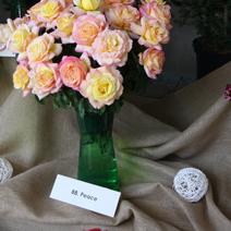 Zdj. nr 42;Święto Róż w Końskowoli 14.07.2019 r.