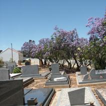 Zdj. nr 30;Cmentarz w RPA