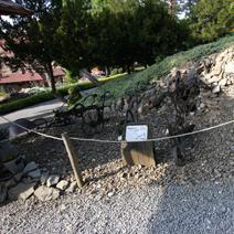 Zdj. nr 38;Stare maszyny i narzędzia w ogrodzie - Wojsławice