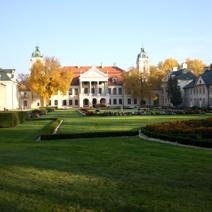 Zdj. nr 36;Park i ogród jesienią
