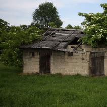 Zdj. nr 25;Stary, opuszczony dom w Stoku