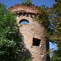 Zdj. nr 12;Ruiny stajni i baszty
