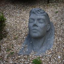 """Zdj. nr 63;""""Głowa"""" - Hillier Gardens"""