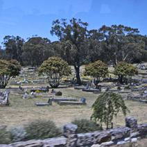 Zdj. nr 10;Cmentarz w Australii