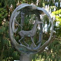 Zdj. nr 257;Hillier Arboretum - Anglia