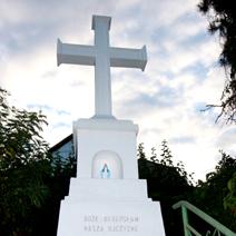 Zdj. nr 51;Krzyż w Górze Puławskiej