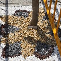 Zdj. nr 10;Kompozycja ściółkowania przy drzewach ulicznych z różnego rodzaju kamyków