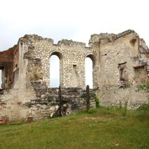 Zdj. nr 10;Ruiny zamku w Janowcu