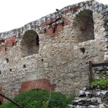 Zdj. nr 12;Ruiny zamku w Janowcu