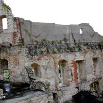 Zdj. nr 15;Ruiny zamku w Janowcu