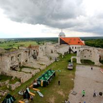 Zdj. nr 17;Zamek w Janowcu