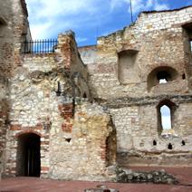 Zdj. nr 18;Ruiny zamku w Janowcu