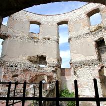 Zdj. nr 19;Ruiny zamku w Janowcu