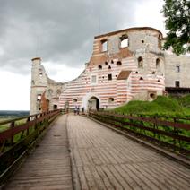Zdj. nr 2;Zamek w Janowcu