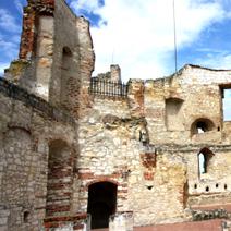 Zdj. nr 21;Ruiny zamku w Janowcu