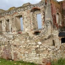 Zdj. nr 22;Ruiny zamku w Janowcu