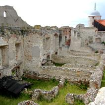 Zdj. nr 24;Ruiny zamku w Janowcu
