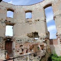 Zdj. nr 3;Ruiny zamku w Janowcu