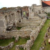 Zdj. nr 6;Ruiny zamku w Janowcu
