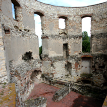 Zdj. nr 7;Ruiny zamku w Janowcu