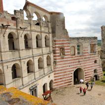 Zdj. nr 8;Ruiny zamku w Janowcu