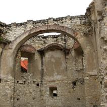 Zdj. nr 9;Ruiny zamku w Janowcu
