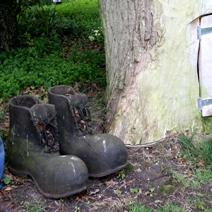 Zdj. nr 250;W ogrodzie P. Harriet Tapper w Leigh Delamere - Anglia.