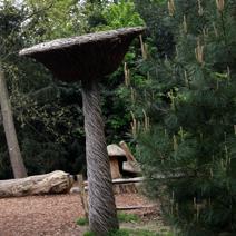 Zdj. nr 267;Kew Gardens