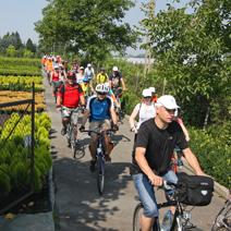Rajd rowerowy po szkółce z okazji Święta Róż