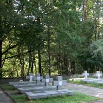 Zdj. nr 17;Cmentarz partyzantów na Porytowym Wzgórzu