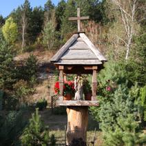 Zdj. nr 65;Kapliczka w Janowcu nad Wisłą