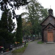 Zdj. nr 16;Kościół i cmentarz w Lipcach Reymontowskich