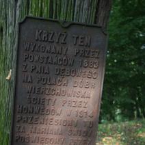 Zdj. nr 168;Krzyż powstańców 1863 roku w Wierzchowiskach