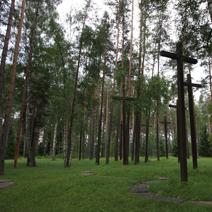 Zdj. nr 13;Las - zbiorowe groby pomordowanych Polaków.