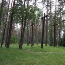 Zdj. nr 18;Las - zbiorowe groby pomordowanych Polaków.