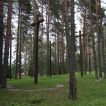 Zdj. nr 15;Las - zbiorowe groby pomordowanych Polaków.