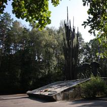 Zdj. nr 77;Pomnik partyzantów na Porytowym Wzgórzu w Lasach Janowickich