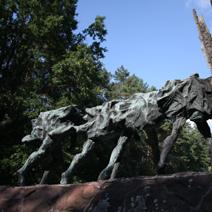 Zdj. nr 78;Pomnik partyzantów na Porytowym Wzgórzu w Lasach Janowickich