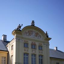 Zdj. nr 8;Północna strona pałacu